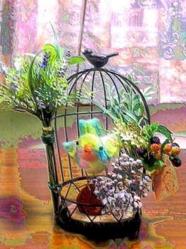 鳥正面2.5jpg.jpg